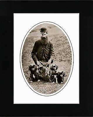 Tibetan Spaniel Gentleman And Dogs Vintage Style Dog Print Matted Ready To Frame