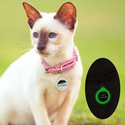 LUMINOUS Free Engraving Dog ID / Cat ID Disc Tag Paw Puppy Pet ID Tags