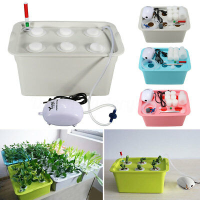 6 Holes Plant Site Water Culture Hydroponic System Bubble Tub Air Pump Box Kit