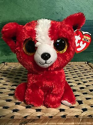 "Ty TOMATO -Red/White Chihuahua Dog 6"" Beanie Boo *Retired Exclusive* RARE & VHTF"