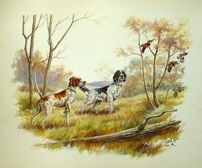 Pointer Dog English Setter Lowell Davis Art Print Vintage Litho 1971 Lithograph