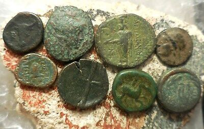 Lot of 8 VF Ancient Greek Coins, Bull head, Trident etc.