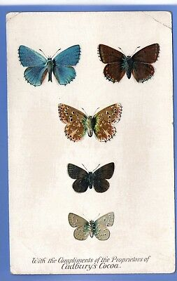 Old Vintage Postcard Size Cadbury's Cocoa Reward Card Adonis Blue Butterfly