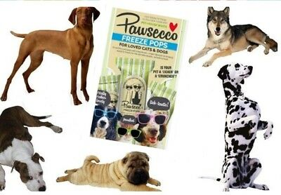 Dog Freeze Pops Ice Pop Chill Pops Pawsecco Freeze Pops Dogs & Cat Treat 6 Pack