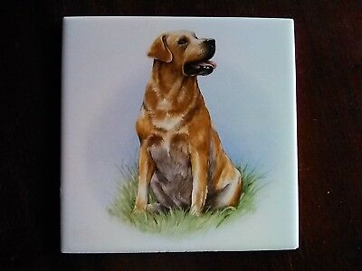 Yellow Labrador Retriever Tile 8""