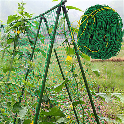 Net Mesh Trellis Plant Support Climbing Netting Green Nylon Fence