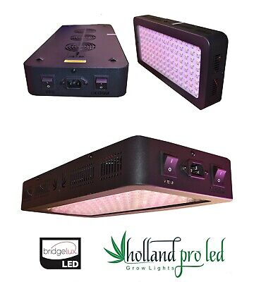 Holland Pro Led Grow Lampe Light 600w  Vollspektrum speziell für Medical Grow