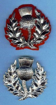 Scottish Thistle Bonnet Badge with Red Backing Cloth