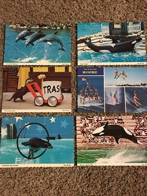 Set of 6 Sea World Postcards from 1970's - Unposted