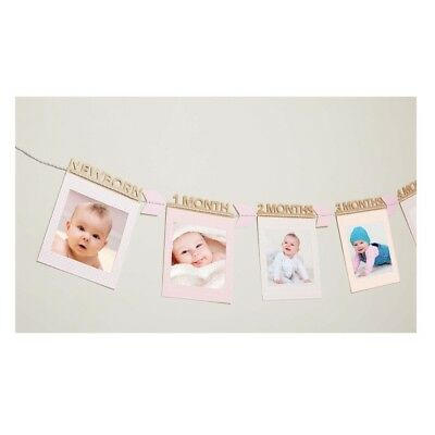 C.R. Gibson E8 Baby Girl First Year Banner Set 13month - Treetops BFYB-19460