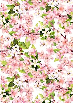 Pink Cherry Blossom Flowers Wallpaper A4 Sized Edible Wafer Paper / Icing Sheet