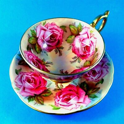 Very Rare Stunning Huge Cabbage Roses Aynsley Tea Cup and Saucer