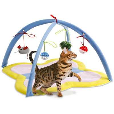 Butterfly Cat Play Tent Foldable Pet Playing Bed Mat Blanket Toy House Bells