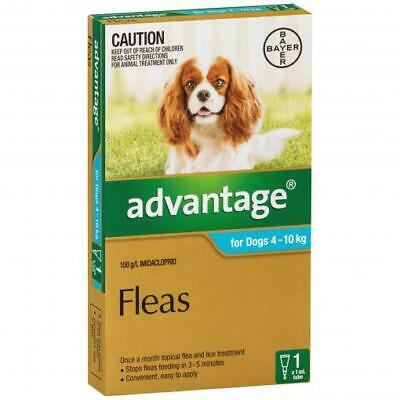 NEW Advantage - Flea Treatment for Dogs 4kg - 10kg
