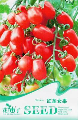 Original Package 30 Tomato Seeds Red Cherry Tomatoes Garden Vegetable B065