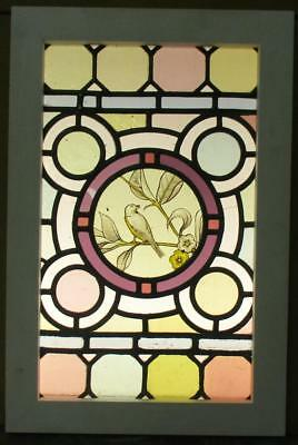 "OLD ENGLISH LEADED STAINED GLASS WINDOW Colorful w/ HP Bird 14.75"" x 22.25"""