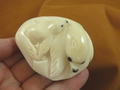 (TNE-SEAL-470-A) Mama seal + little Baby TAGUA NUT palm figurine carving seals
