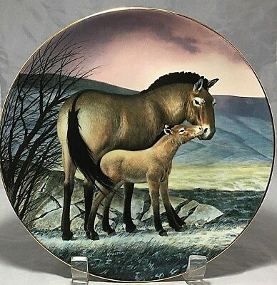 """Horse& her Foal Przewalski's,1991 collector's 8 ½"""" decorative porcelain plate"""