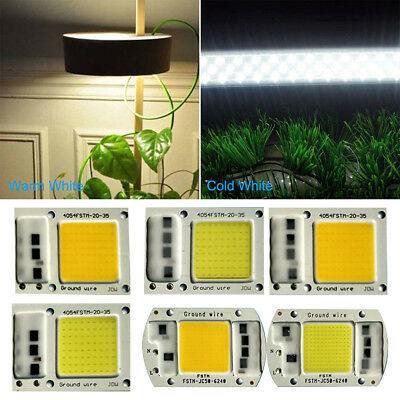 New 220V LED Floodlight 20/30/50W Cool/Warm White COB Chip Smart IC Driver Lamp