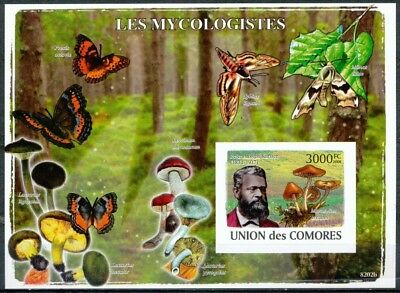 [35684] ND/Imperf- BL - Union des Comores - ND/imperf - Les Mycologistes - Peter