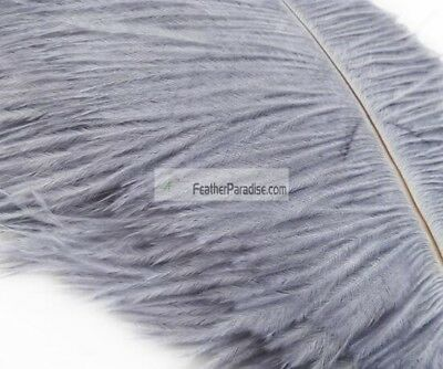 Silver Ostrich Feathers 14-16 inch 12 Pieces(GA, USA)