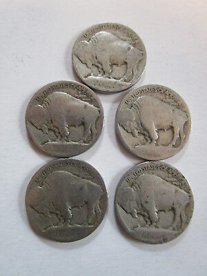 1913 Type 1 raised mound buffalo indian head nickel Lot of 10 nickels