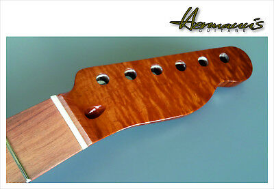 Telecaster Roasted Curly Maple Neck mit Abalon Dots im Pau Ferro Griffbrett