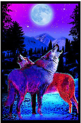 Timberwolves - Blacklight Poster - 23X35 Flocked Nature Wolves Moon 1980