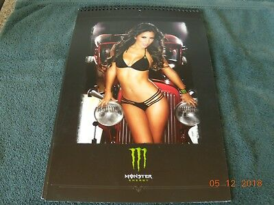 """Monster Energy Drink Dub Girls Picture Book 16 Posters 17"""" X 11"""" Perforated"""