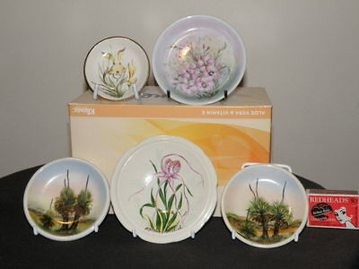 Wembley Hand Painted Plates - Five