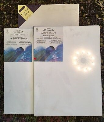 Windsor & Newton 2 X Art Paint Stretched Cotton Canvas 16 X 12 Inch  New Sealed!