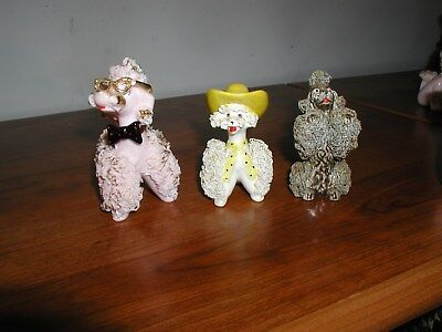 Three Very Nice Spaghetti Poodles-They Look Great