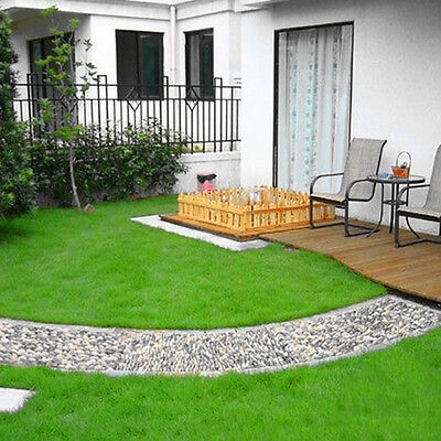 1000Pcs Lawn Green Grass Seeds Festuca Arundinacea Lawn Field Courses