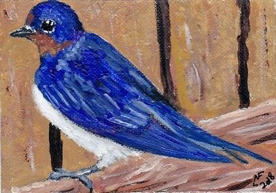 ACEO Original Little barn Swallow by artistnelson