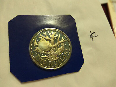 BARBADOS $2 PROOF COIN STAGHORN CORAL BIG 36mm