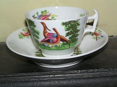 19th century Staffordshire 2 Birds design porcelain Cup and deep Saucer