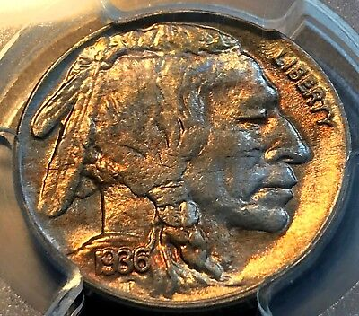 1936-D Buffalo Nickel PCGS MS64 Cool Tone Scratch-Free Holder Price Reduced CHN