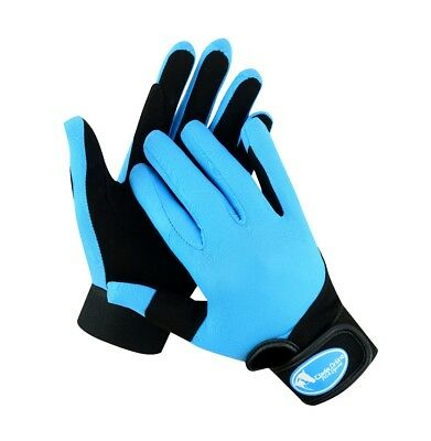 Blue / Teal Synthetic Riding Gloves