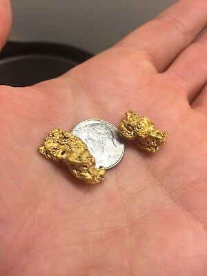 Premium Rich Gold Nugget Panning Paydirt Sluiced Concentrates Pay Dirt