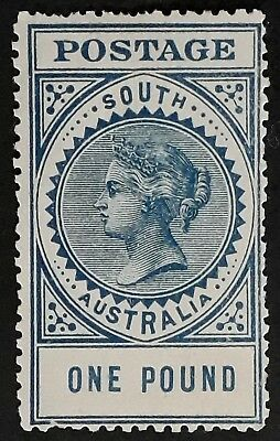 Rare 1904 South Australia £1.00 Blue Long Thick Postage Stamp Full Gum Mint