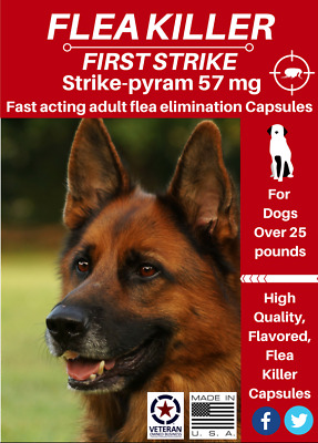 24 capsules Fast results Flea killer flavored capsules 57 mg for Dogs