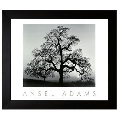Ansel Adams Oak Tree Sunset City California Canyon de Chelly Monument Set 30x24