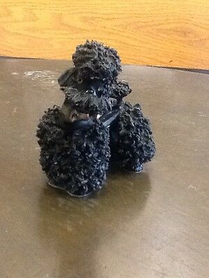 Black Spaghetti Poodle Wearing A Shiny Gold Collar 4 Inches High