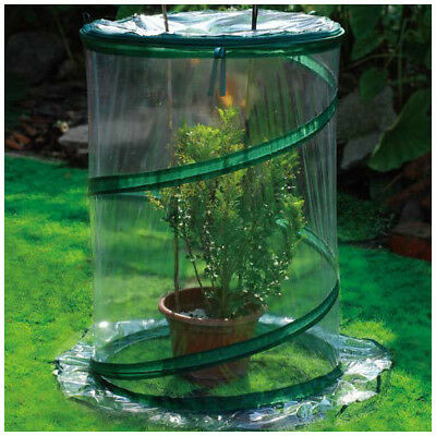 Zenport 2.5 Ft. W x 2.5 Ft. D Cold-Frame Greenhouse