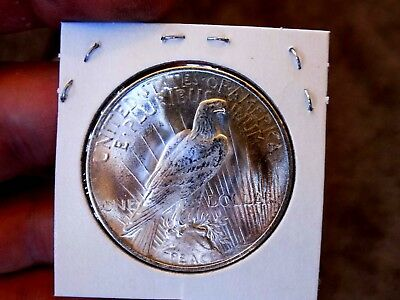 Peace Silver Dollar 1922 Ch Gem BU Blazing Satin White MS++++++ Pure Frost