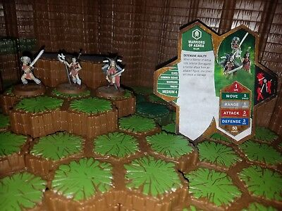Heroscape Warriors of Ashra - with card - D&D RPG Warhammer minis