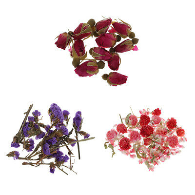 4g/Bag Real Flower Dried Flowers for Jewelry Making Craft DIY Resin Ornament