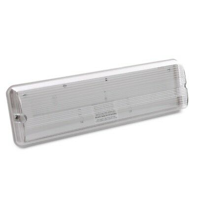 8W Emergency Lighting Bulkhead - Eden ED8