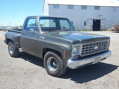 1976 Chevrolet Other Pickups 1/2 Ton Short Bed Stepside 1976 CHEVY 1/2 TON TRUCK SHORT STEPSIDE SOLID WEST TEXAS PICKUP 350 1977 1979