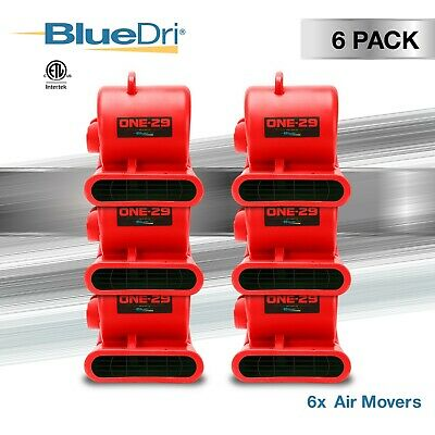 6 Pack BlueDri ONE-29 Air Mover Carpet Dryer Floor Fan Blower for Water Damage